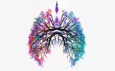 Pranayama, el arte de la respiración
